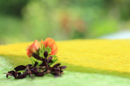 Royalty free image of Orange flowers with a blurry bokeh background