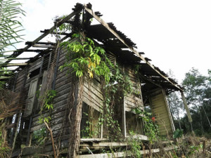 old_abandoned_house_tn